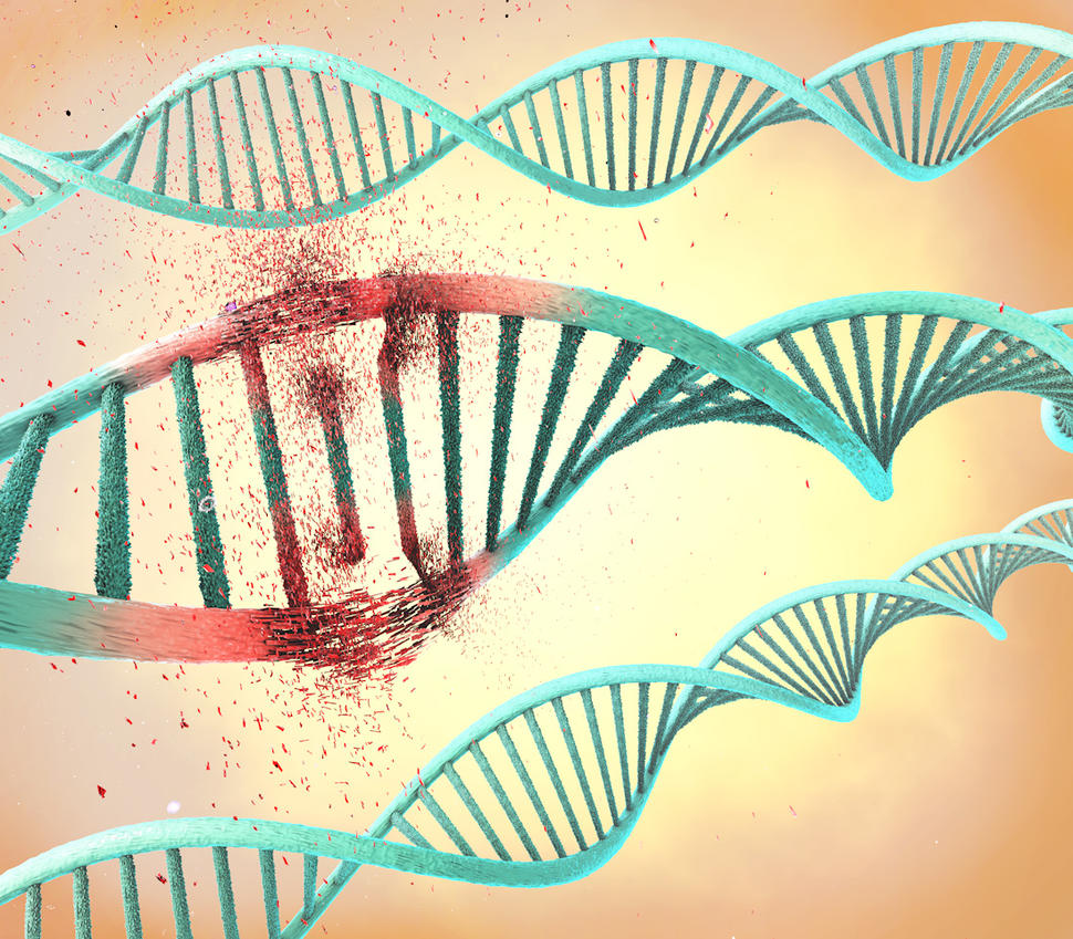 Illustration of a damaged DNA double helix.