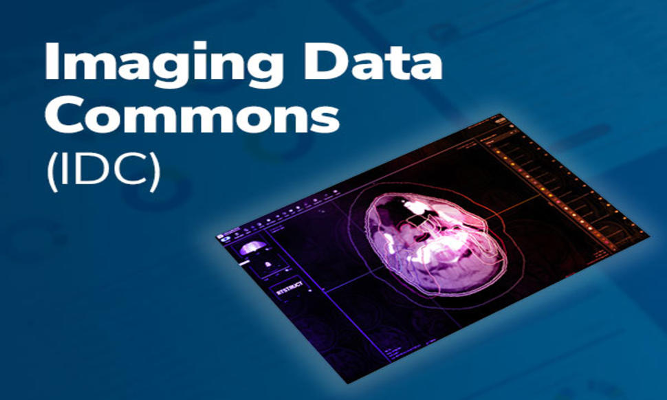 Imaging Data Commons