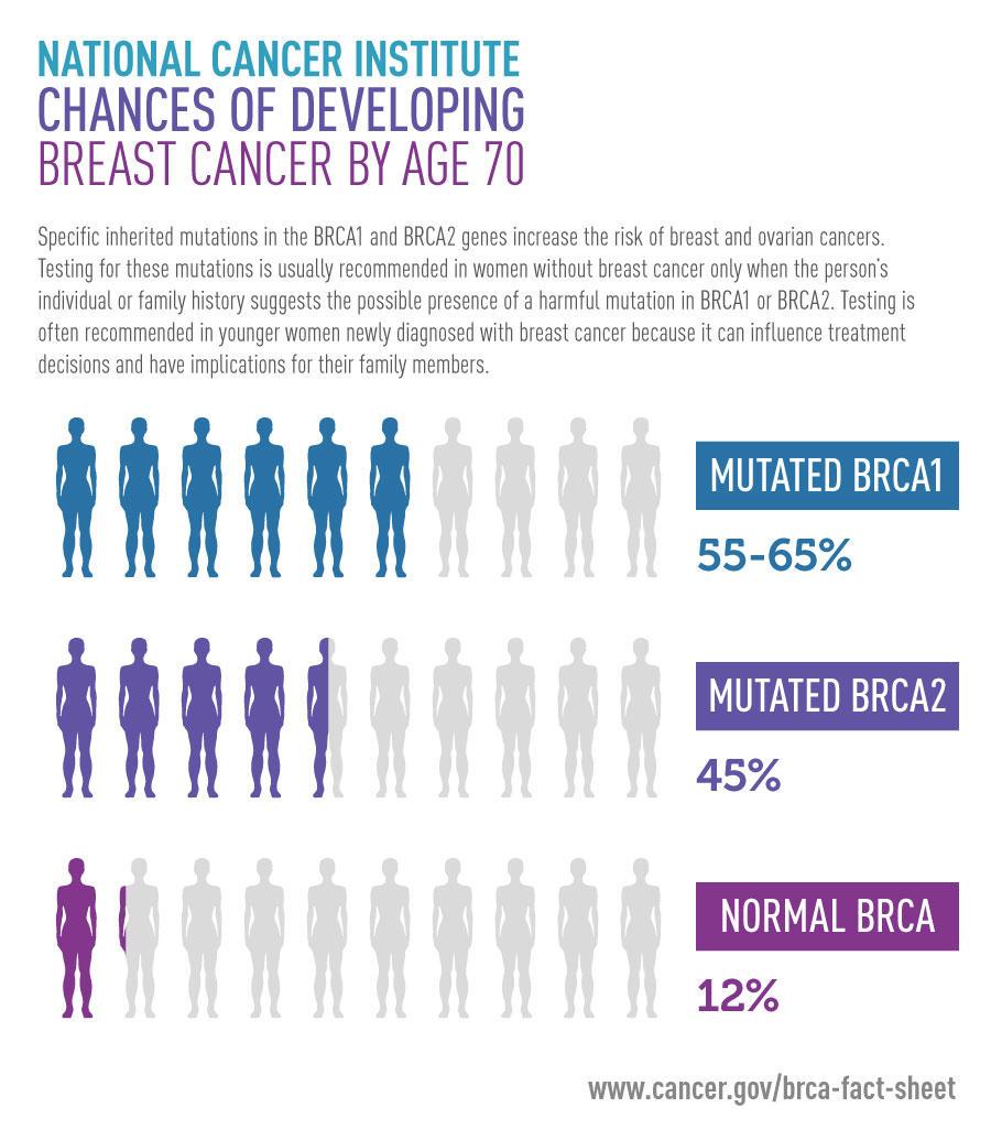 brca1 prostate cancer risk