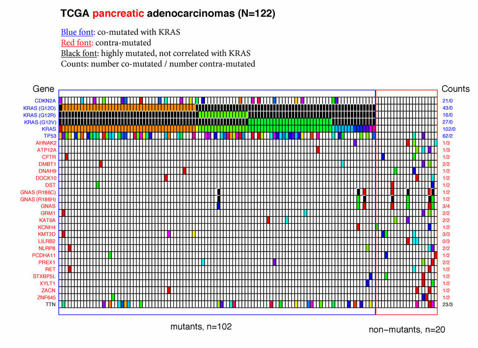 Genes Co-mutated with KRAS - National Cancer Institute