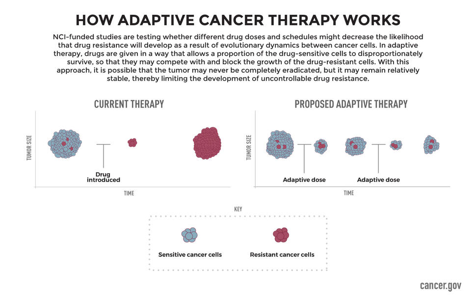 How Adaptive Cancer Therapy Works Infographic