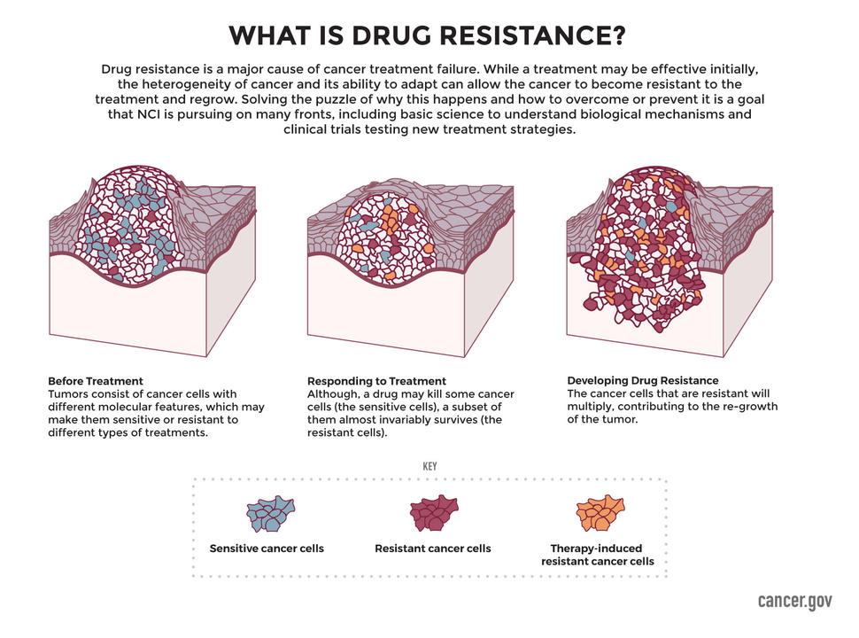What is Drug Resistance Infographic