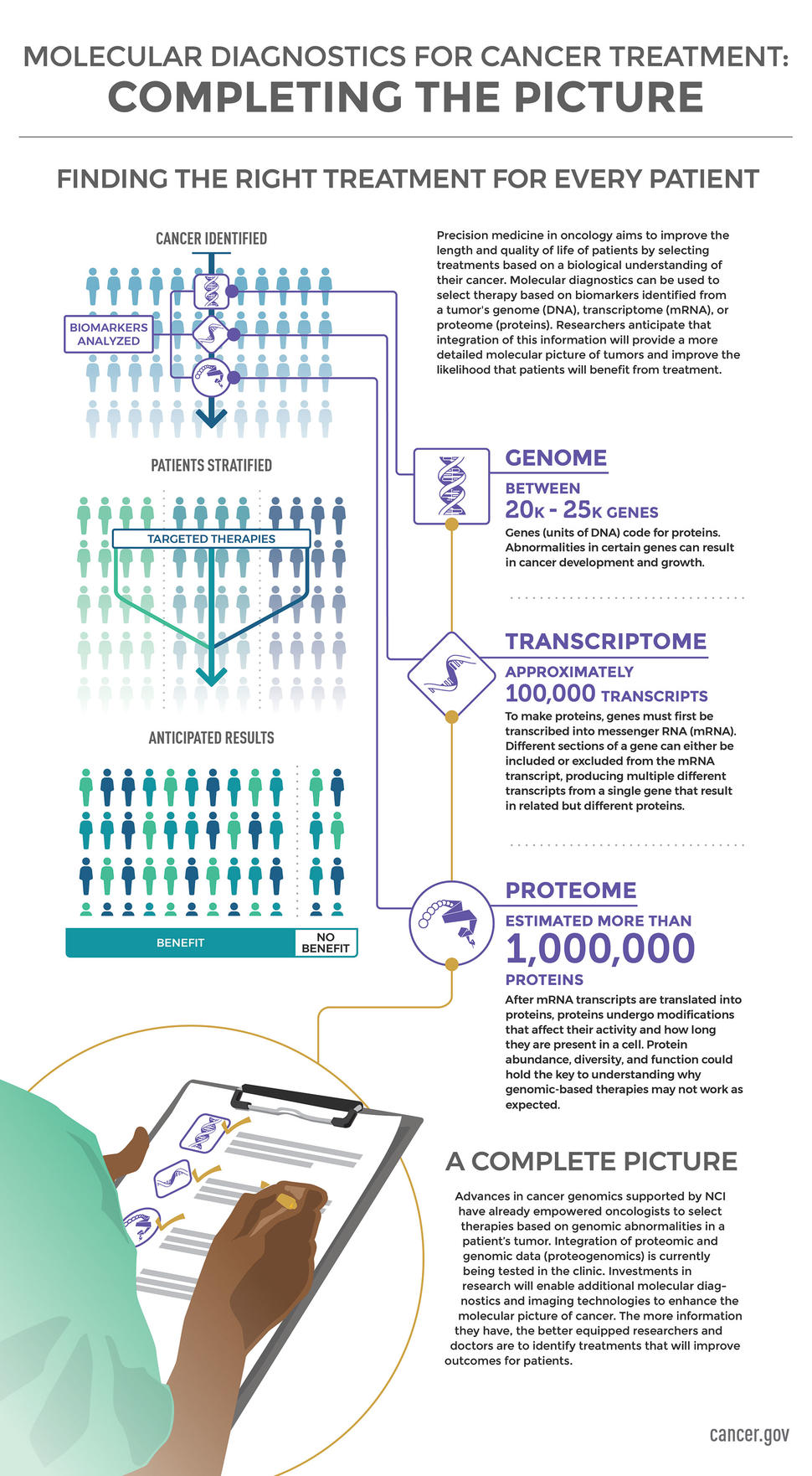 Molecular Diagnostics for Cancer Treatment: Completing the Picture Infographic