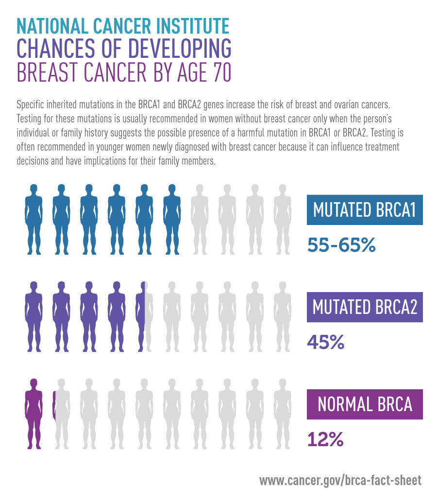 Discovery Brca Connection To Breast And Ovarian Cancer National Cancer Institute