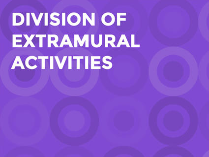 Graphic for the Division of Extramural Activities