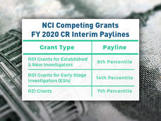 NCI Competing Grants FY 2020 CR Interim Paylines. R01 Grants for Established & New Investigators - 8th Percentile; R01 Grants for Early Stage Investigators (ESIs) - 14th Percentile; R21 Grants - 7th Percentile