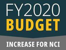 Fiscal Year 2020 Budget Increase for NCI